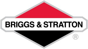 Best Briggs and Stratton Pressure Washer Reviews