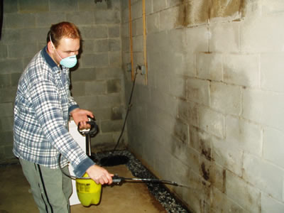 How To Remove Mold